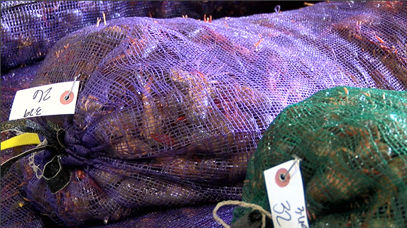 Sacks of crawfish at D & T Crawfish