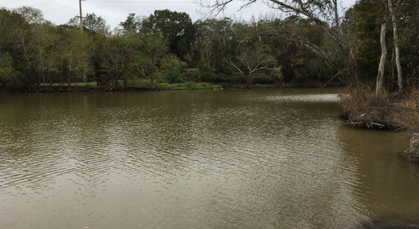 Bayou Blanc, where a body was found today