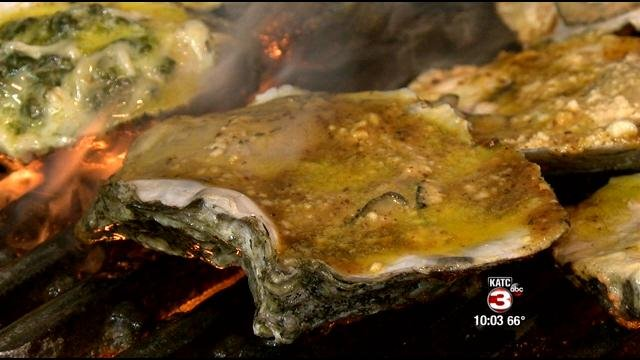 Oysters hurt during oil spill