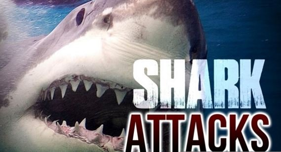 Shark Bites 18 Year Old at Atlantic Beach Over the Weekend""